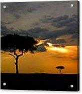 Rains In Africa Acrylic Print