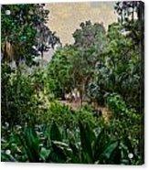 Rainy Day At Bok Garden Acrylic Print