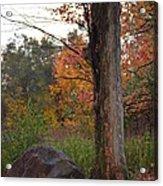 Rainy Fall Day Acrylic Print by Jennifer  King