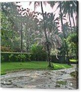 rainy Kerala  Acrylic Print