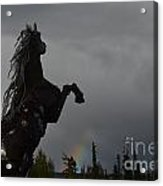 Raising Rainbows Acrylic Print