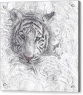 Rajah Acrylic Print