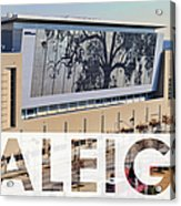 Raleigh At The Shimmer Tree Acrylic Print