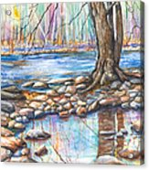 Ralph Stover Park In The Spring Acrylic Print by Patricia Allingham Carlson