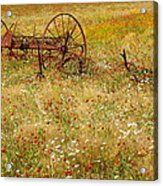 Ranch And Wildflowers And Old Implement 2am-110546 Acrylic Print