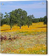 Ranch And Wildflowers And Old Implement 2am-110556 Acrylic Print