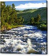 Rapids In Yellowstone Acrylic Print