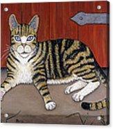 Rascal The Cat Acrylic Print