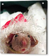 Rat Elf Acrylic Print