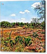 Rattle Rock Road Acrylic Print