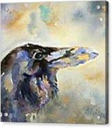 Raven I Acrylic Print