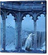 Raven Of Winter Acrylic Print