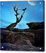Raven On Twisted Tree With Moon Acrylic Print