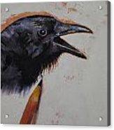 Raven Sketch Acrylic Print