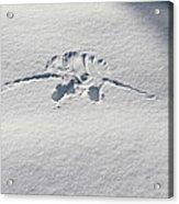 Raven Snow Angel Acrylic Print