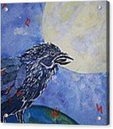 Raven Speak Acrylic Print