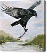 Raven Stealing Time Acrylic Print