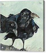 Raven's Perch Acrylic Print