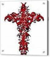 Ravi Cross 3 Acrylic Print
