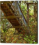 Ravine State Gardens Palatka Florida Acrylic Print