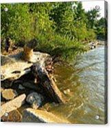 Raw Lake Erie Shore Acrylic Print