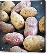 Raw Potatoes Acrylic Print