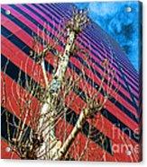 Reach For The Sky Acrylic Print
