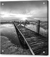 Reaching Into Sunset In Black And White Acrylic Print