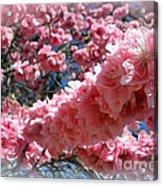 Reaching Out... Acrylic Print