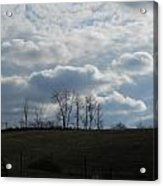 Reaching To The Clouds Acrylic Print