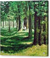 Reader In The Park Acrylic Print