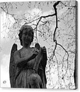 Reading Angel Acrylic Print by Jennifer Ancker