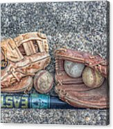 Ready To Play Ball Acrylic Print by Randy Steele