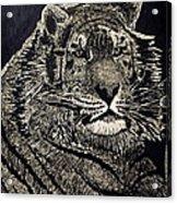 Reagle Acrylic Print