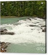 Rearguard Falls Of The Fraser River Acrylic Print