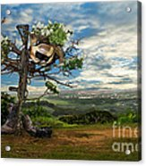 Rebirth Of A Fallen Soldiers Cross Acrylic Print
