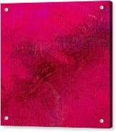 Reclusive Pink Acrylic Print
