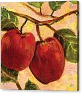 Red Apples On A Branch Acrylic Print