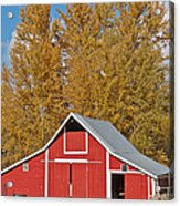 Red Barn And Fall Colors Acrylic Print