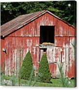 Red Barn Two Trees Acrylic Print by Paulette Maffucci
