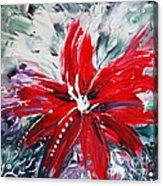 Red Beauty Acrylic Print by Teresa Wegrzyn