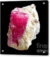 Red Beryl Crystal On Matrix Acrylic Print