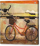 Red Bicycle And Cat Acrylic Print
