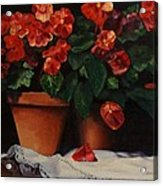 Red Bloom In Terracotta Acrylic Print