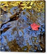 Red Blue And Gold Acrylic Print