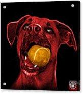 Red Boxer Mix Dog Art - 8173 - Bb Acrylic Print