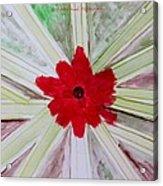 Red Brilliance Acrylic Print