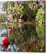Red Buoys Acrylic Print