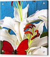 Red Butterfly On White Tiger Lily Acrylic Print by Garry Gay