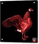Red Canada Goose Pop Art - 7585 - Bb  Acrylic Print